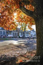 2271 best williamsburg va images on colonial
