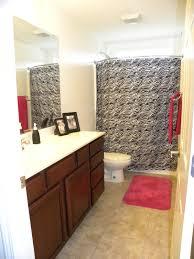 bathroom awesome clear door inside zebra print bathroom near