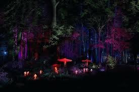 Outdoor Laser Lights Laser Landscaping Lights Outdoor Landscaping Outdoor Laser Lights