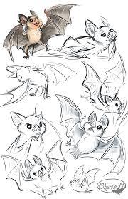 drawn cute vampire bat pencil and in color drawn cute vampire bat