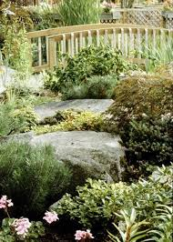 agreeable backyard landscape designs pictures complexion
