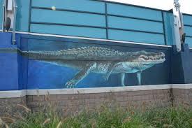 newport aquarium celebrates shark week by unveiling 35 foot sand dsc 3063