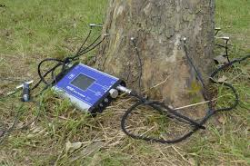 picus sonic tomograph products tree inspection argus