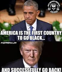 Once You Go Black Meme - once you go black youll never go back keep america american
