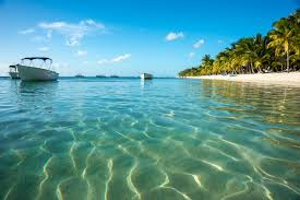 bird island belize rental south water caye an incredible island in southern belize