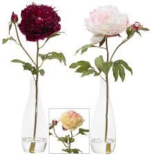 20 Glass Vase 20 Single Peony With Bud No Vase 5178 Flowers Royale Inc