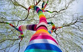 tree sweater a tree with a rainbow sweater the meta picture