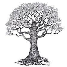 the tree of celtic tree tatoo and celtic knots