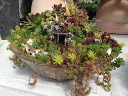 169 best fairy garden containers images on pinterest fairies