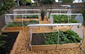 creative starting a home garden vegetable gardening ideas home