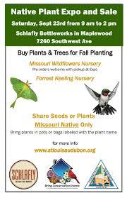 nursery native plants native plant expo at schlafly bottleworks bring conservation home