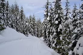 cabin creek nordic ski area cross country skiing in washington