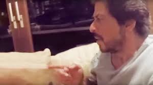 ghost spotted in shahrukh khan house mannat srk also kissed