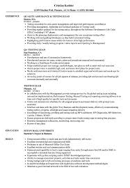 free resume writing services in atlanta ga seadoo testing lead resume sles velvet jobs