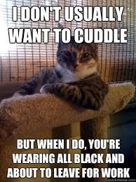 Cuddle Meme - i don t usually want to cuddle the meta picture