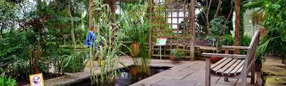 a rainy day at rbg ontario u0027s royal botanical gardens i u0027ve been