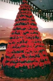 christmas at the gaylord opryland hotel nashville been there