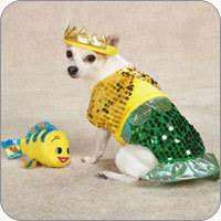 Doggy Halloween Costumes Dog Costumes Dog Halloween Costume Ideas U0026 Styles Funnyfur