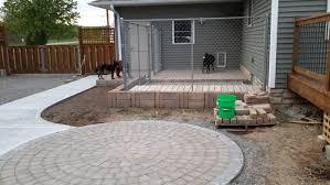 need dog friendly shrub ideas to disguise dog kennel