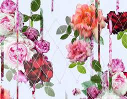 Rose Flower Design Best 25 Bleeding Rose Ideas Only On Pinterest Halloween Makeup