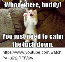 Calm The Fuck Down Meme - whoa there buddy laughii you just need to calm the fuck down