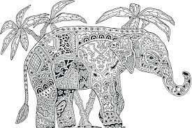 elephant coloring pages adults to print free zoo animals tropical