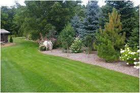 simple backyard landscaping ideas pictures httpbackyardidea photo