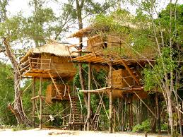 Real Treehouse Treasures Of Cambodia August 2015