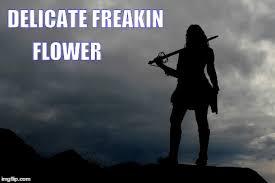 Strong Woman Meme - delicate freakin flower imgflip