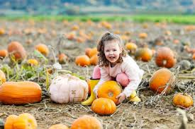 Outdoor Family Picture Ideas Six Outdoor Activities That Are Perfect For Fall Participaction