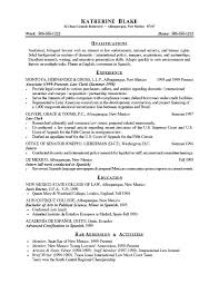 A Resume Example In The by Summary For Resume Examples Executive Summary Example Resume