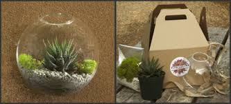 tiny terrariums at flora grubb gardens bring the outside in l a