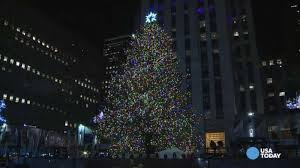 Bronx Zoo Holiday Lights by Rockefeller Center Christmas Tree Lights Up New York