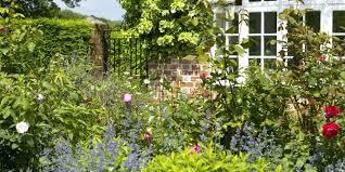 Garden Shrubs Ideas Best Bushes For Front Of House Large Size Of Garden Shrubs Ideas