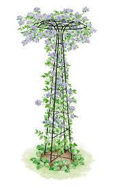 garden trellis essex umbrella shaped tuteur gardener u0027s supply