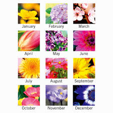 flowers of the month fresh birthday month flowers layout best birthday quotes