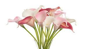 artificial flower artificial flower arrangements gary cobb pulse linkedin