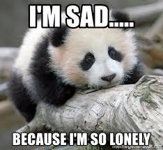 Lonely Meme - i m sad because i m so lonely sad panda meme generator