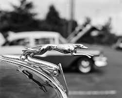1934 ford v8 ornament photograph by jon woodhams