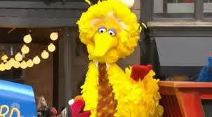 big bird yes gif by the 90th macy s thanksgiving day parade find