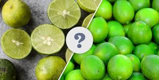 what is the difference between key limes and conventional limes