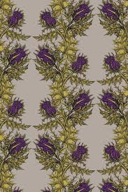 timorous beasties wallcoverings grand thistle hand printed wallpaper