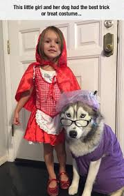 Cool Kid Halloween Costume Ideas Best 25 Dog Halloween Costumes Ideas On Pinterest Dog Halloween