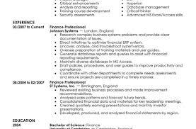 finance resumes resume beautiful financial resumes caregiver professional resume