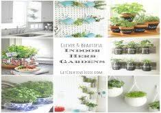exceptional how to grow an indoor herb garden best indoor herb