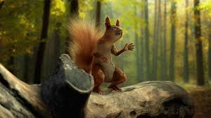 realistic squirrel show us your wip u0027s u0026 final images c4d cafe
