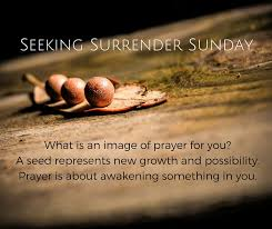 Seeking What Is It About Seeking Sunday Colette Lafia