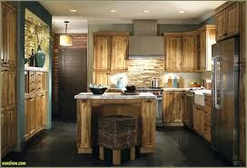 kitchen kitchen cabinets lowes fresh lowes design a kitchen