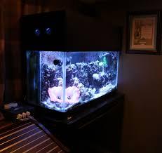 building a aquarium canopy reef aquarium