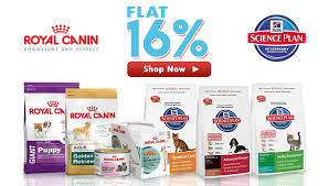 belgian shepherd for sale in india which is the best dog food for german shepherds pets world
